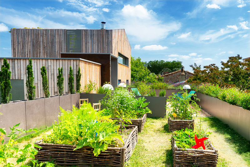 Jardin potager pour shooting photo