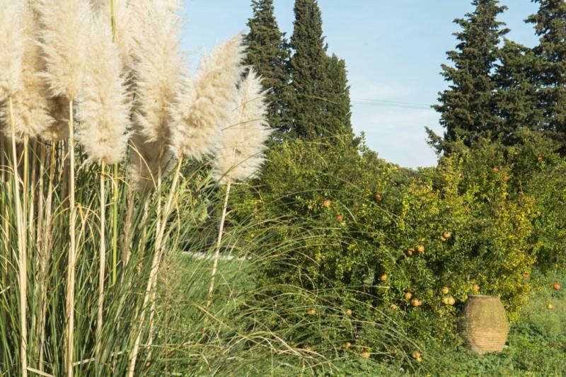 trouver un décor de film en Provence