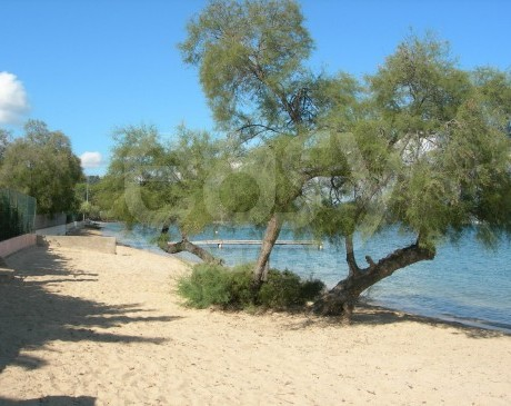 plage de sable fin et blanc St-Tropez