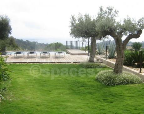 Jardin dans villa contemporaine pour production photographique saint tropez