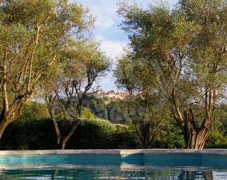 Location jardin avec piscine pour shootings photos Cannes Alpes Maritimes 06