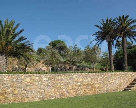 jardin de maison provençale avec mur en pierre et palmiers saint tropez