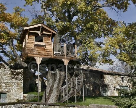 cabane en bois dans jardin d'un mas authentique Lubéron