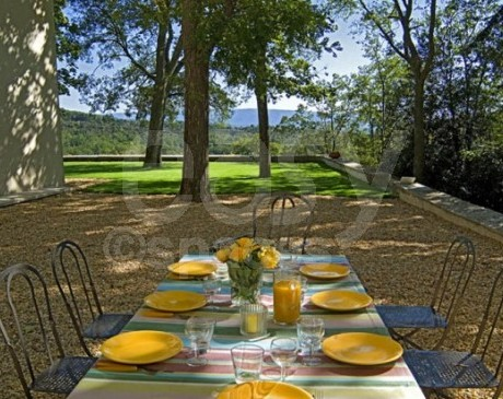 location de maison avec piscine entourée de vignes Luberon