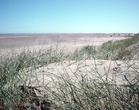 photos de repérages de plages sauvages et dunes camargue france