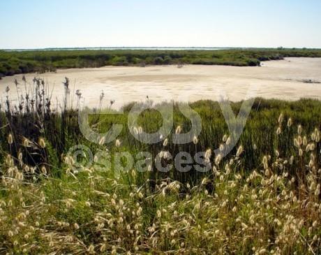 repérages de lieux et décors naturels sud de la france camargue arles marseille