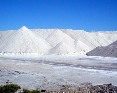 REPERAGES DUNES ET DESERT EN CAMARGUE