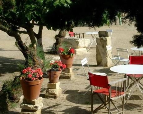 location de mas avec terrasse fleurie pour rencontre thematique dans le sud de la france camargue