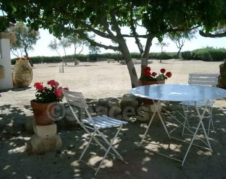 agence de reperages avec terrasse fleurie pour evenements d'entreprises camargue provence alpes cote d'azur