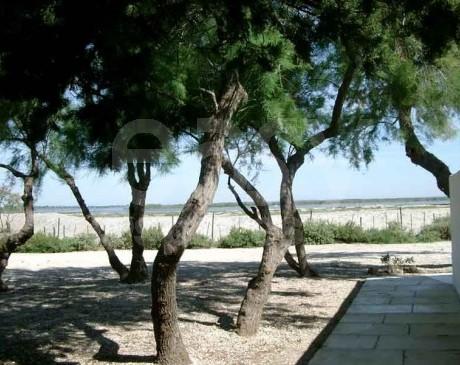 location de lieu pres de la plage pour tournage de film camargue provence alpes cote d'azur