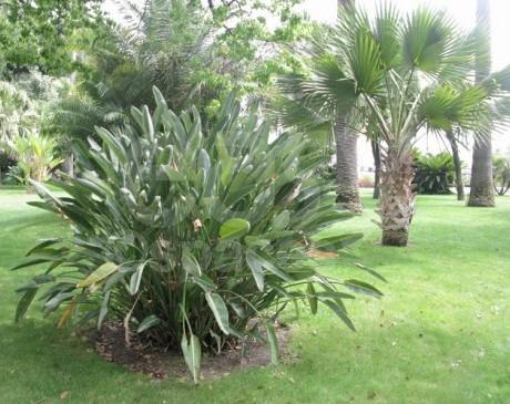location de lieu avec grands espaces et jardin pour photos dans le sud de la france nice