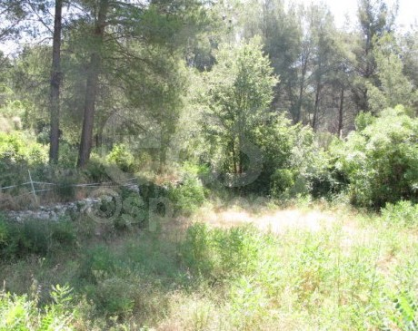 location de decor dans le sud de la france pour photos marseille 13