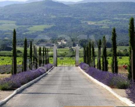 Location de lieu au coeur des vignes pour événements pros  dans le luberon sud de la France