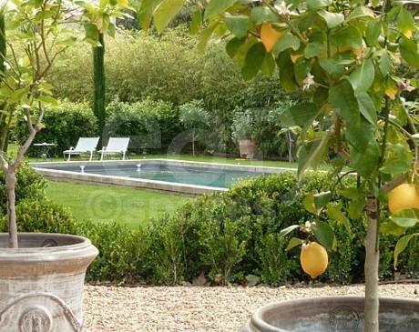 Location belle demeure avec grands jardins verts Cavaillon Apt Luberon